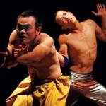 Múa đương đại: Châu Âu chưa gặp Việt Nam