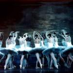 Vở ballet 'Hồ thiên nga' công diễn tại Hà Nội