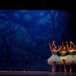 Nội dung vở ballet Kẹp hạt dẻ