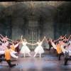 """Đặc sắc """"Đêm múa ballet Australia tại Việt Nam"""""""