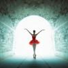 Ảnh múa ballet Việt được triển lãm ở Ukraine